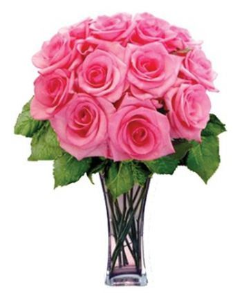 Roses all colors 12 Pink Roses Kuwait